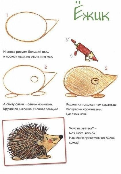 Пособия Уроки рисования как нарисовать ежа схема