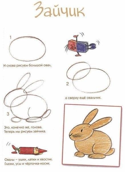 Пособия Уроки рисования как нарисовать зайца схема