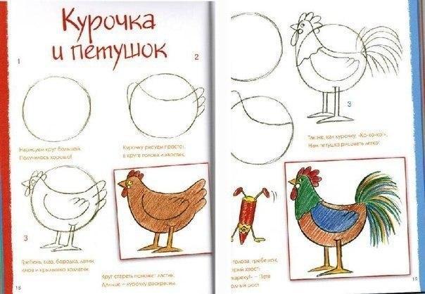 Пособия Уроки рисования как нарисовать курицу и петуха схема