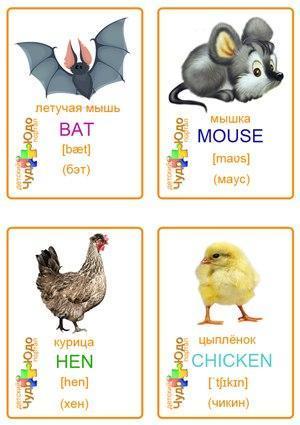 Пособия Животные карточки с животными по английскому языку
