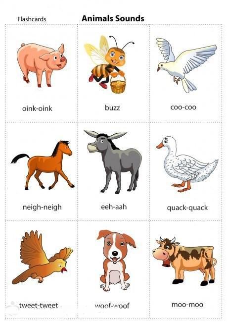 Пособия Животные Карточки по английскому для детей, скачать
