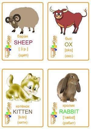 Пособия Животные карточки животные по английскому языку, распечатать