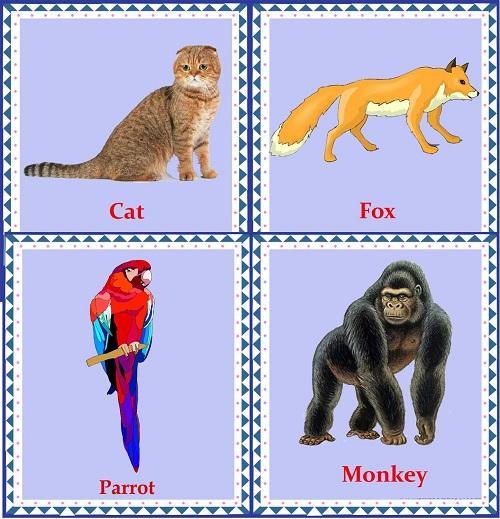 Пособия Животные карточки животные по английскому языку, скачать бесплатно