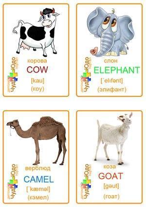 Пособия Животные карточки для изучения английского языка, животные
