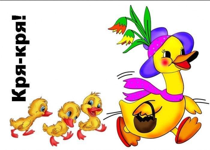 Пособия Птицы утка, карточки для детей, птицы