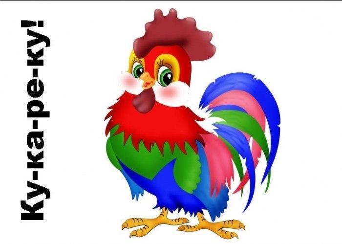 Пособия Птицы петух, дидактические карточки птицы