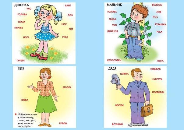 Пособия Карточки для развития речи части тела, одежда, пол, возраст, карточки для развития речи скачать