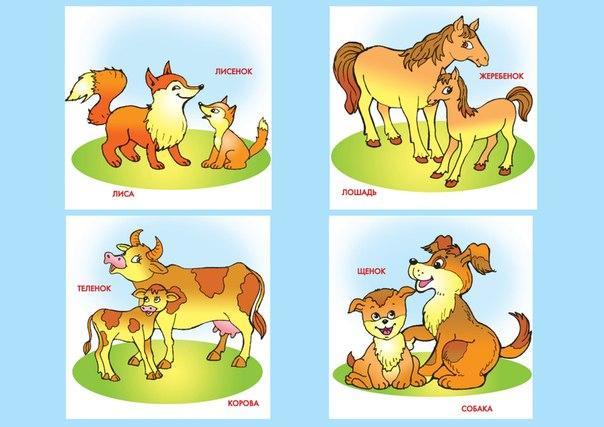 Пособия Карточки для развития речи животные и детеныши, карточки по развитию речи для дошкольников